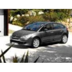 Citroen C4 Window Sox